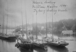 sealing-schooners-victoria-1894