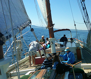 Deck of historic trading schooner, Spike Africa