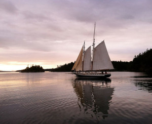 Schooners-North-sunset sail adventure