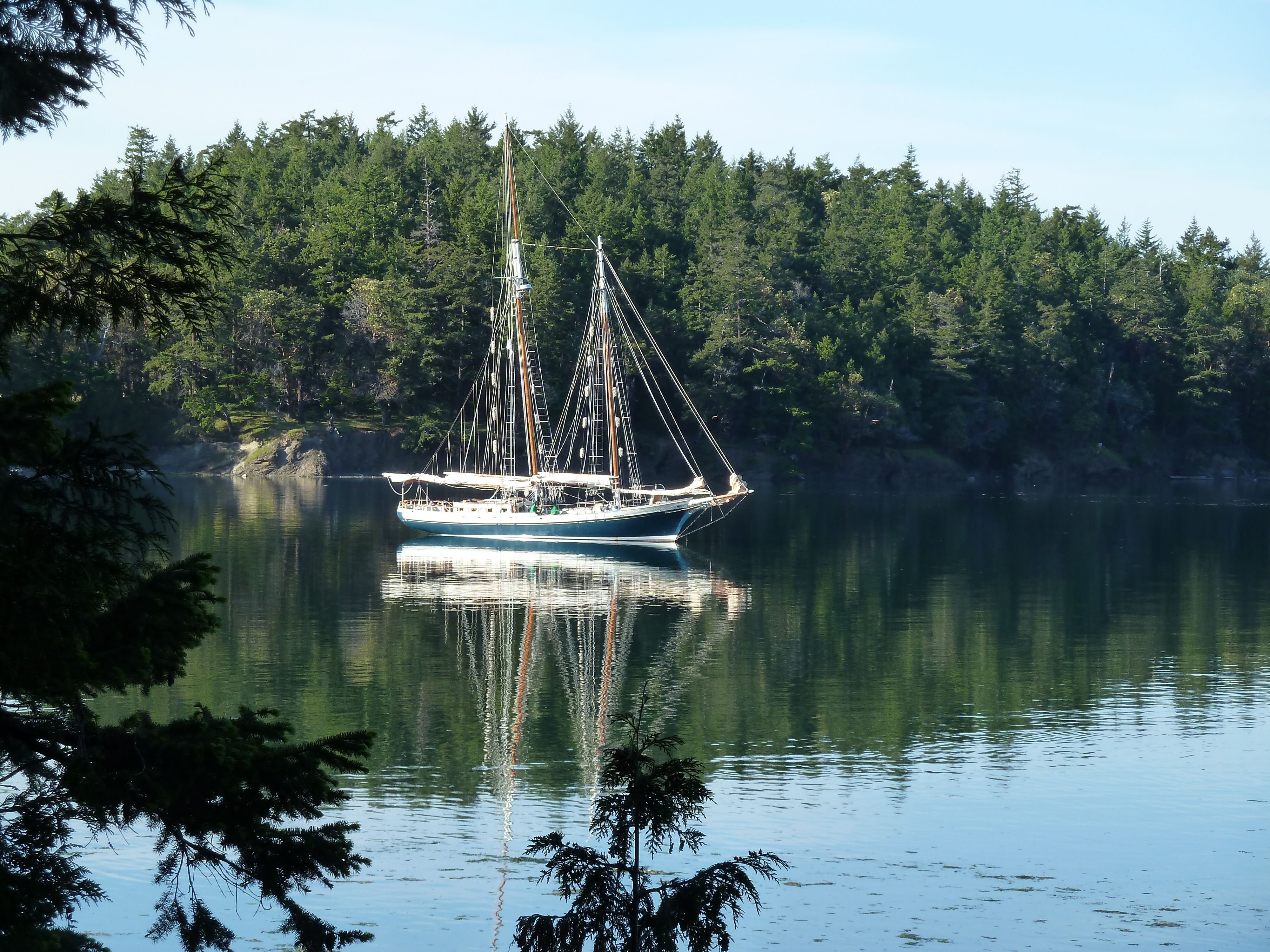Get the Most Out of San Juan Island Cruises with Island Hopping Tours