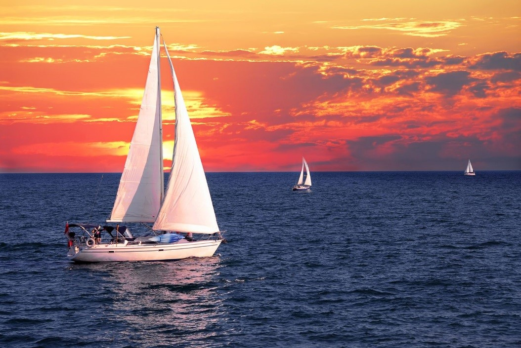 San Juan Island Charters Are the Best Way to Enjoy the Salish Sea