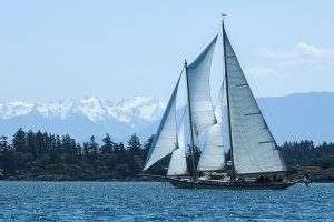 San Juan Islands Cruises Can Provide Various Beneficial Experiences