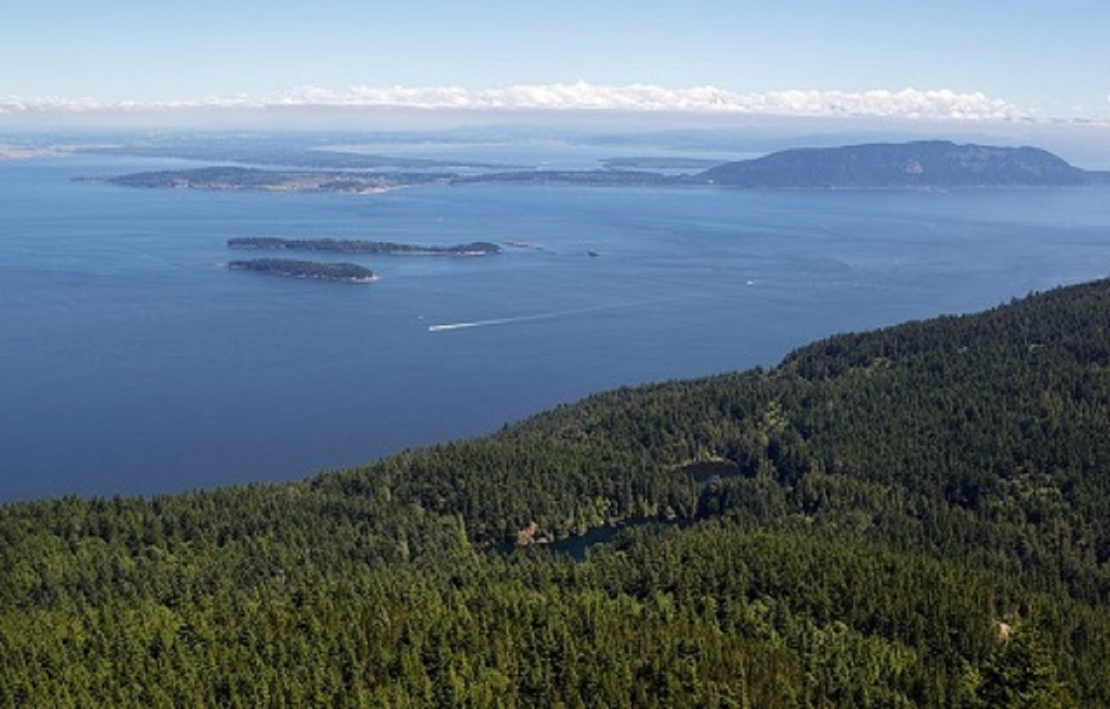 Where Should You Go on Your Boat Charter Around the San Juan Islands?