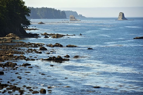 Straight-Up Adventure: A Boat Charter to the San Juan Islands & Beyond